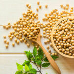Agriculture : l'UE nomme le Togo premier exportateur du soja bio